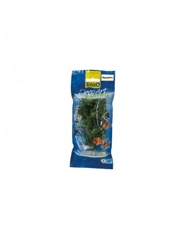 Tetra Plants 15cm Hygrophila
