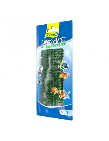 Tetra Plants 15cm Anacharis small