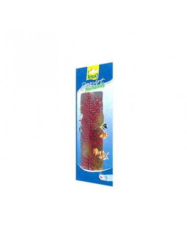 Tetra Plants 38cm Red Foxtail