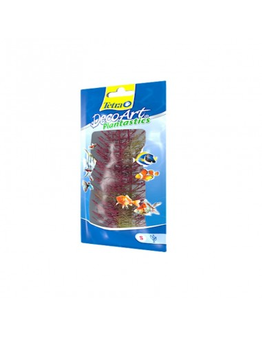 Tetra Plants 15cm Red Foxtail