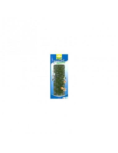 Tetra Plants  Cabomas 23cm
